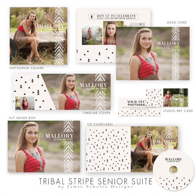 Tribal Stripe High School Senior Templates by Jamie Schultz Designs